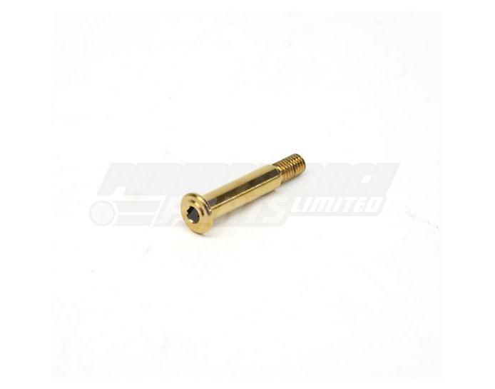 Galespeed Optional Gold Pivot Pin - For use with RM and VRC
